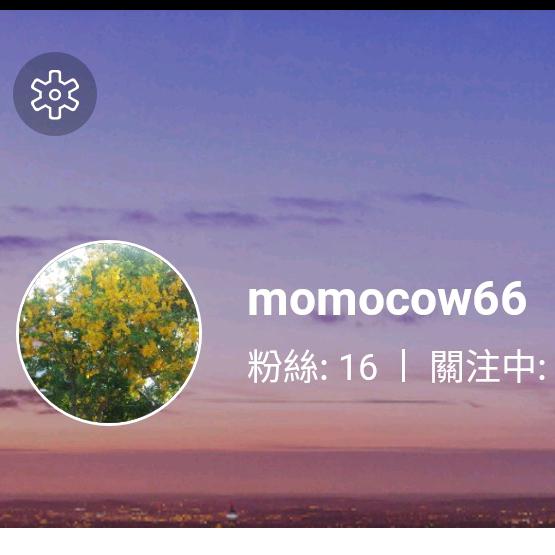 MOMOCOW