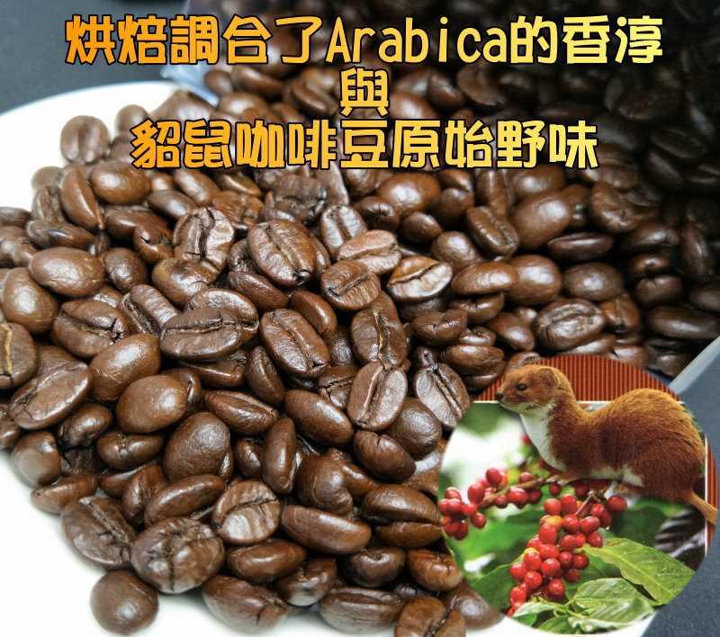 ㊣越南進口特級貂鼠咖啡豆(500g/包) 限量加贈原裝進口不銹鋼越南滴滴壺