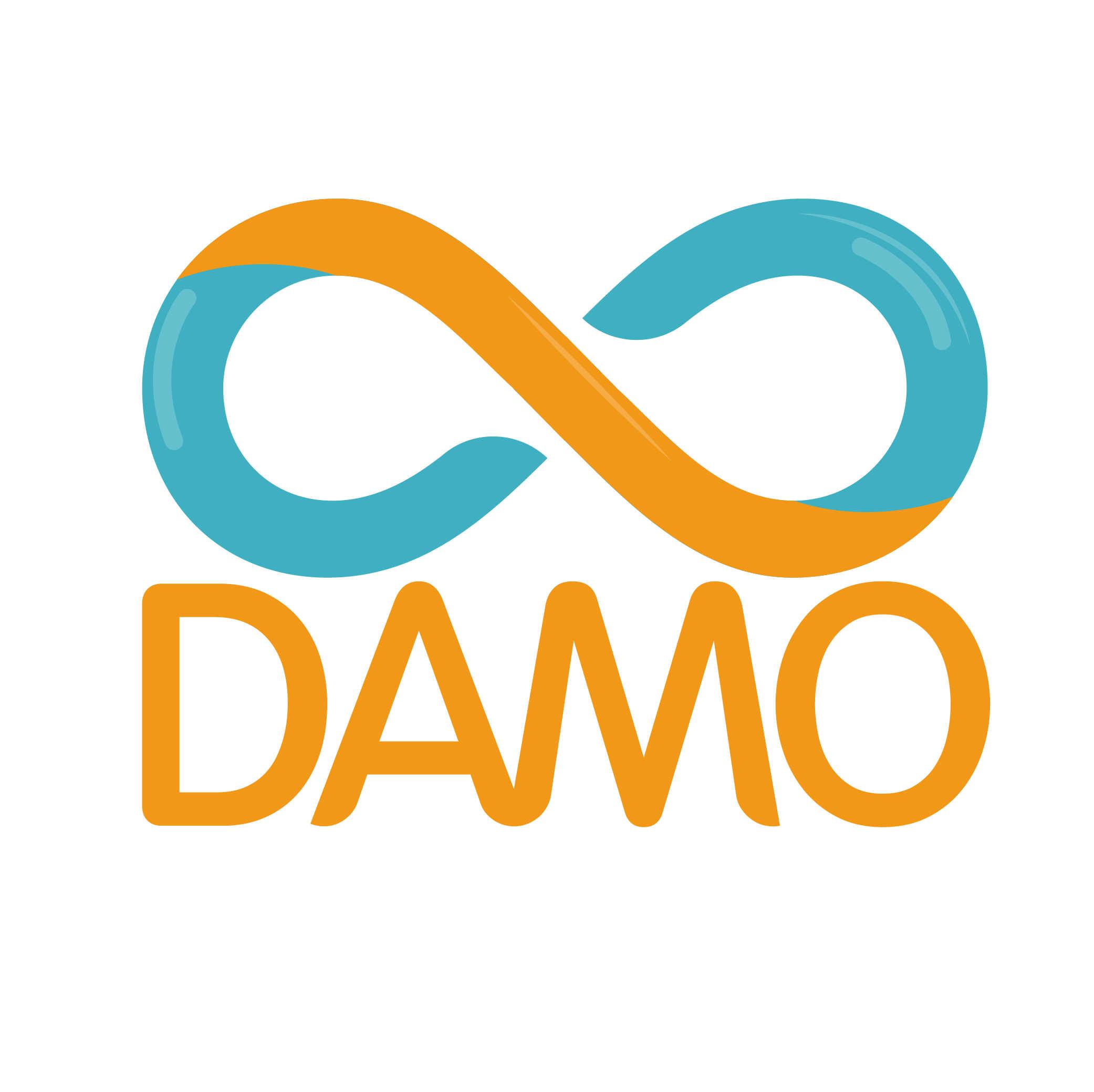 大摩 DAMO