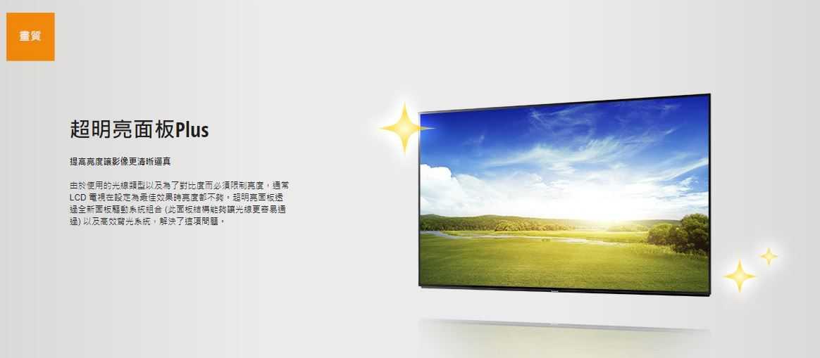Panasonic 國際牌 65吋  4K  液晶顯示器 高清晰  TH-65FX600W